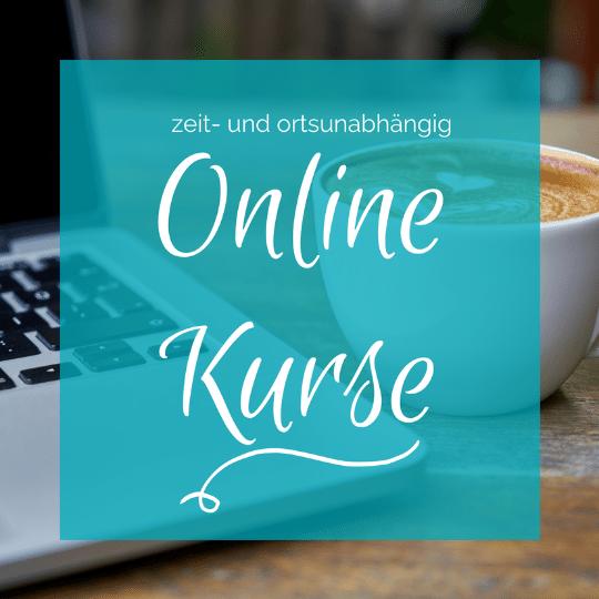 online Violine Kurs