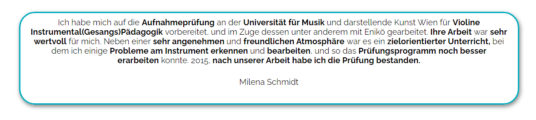 Bester Violinenunterricht in Wien